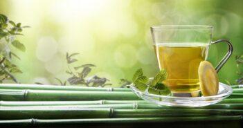 grüner Tee: Gilt doch als sehr gesund, nur mit Plastik? Naja wohl eher nicht