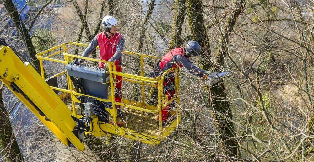 Bühne mit Teleskop: Sicheres Ausholzen im Gelände (#1)