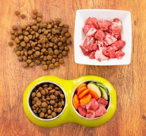 PETS DELI: stark im Markt mit Futter in Lebensmittelqualität (#1)