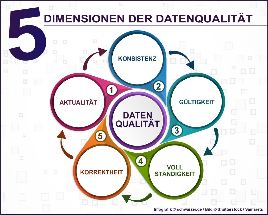 Infografik: Die 5 Dimensionen der Datenqualität