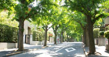 Hess AG: Baumscheiben im Handformguss