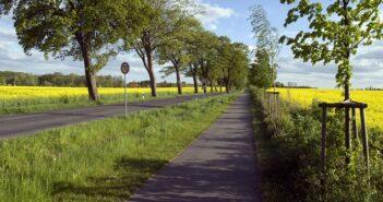 Datenanalyse ermöglicht bessere Radwege