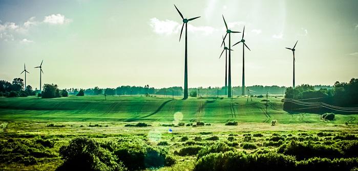 Green IT: Definition, Chancen und Zukunftstrends