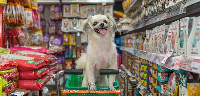 Hundefutterindustrie: Das Geschäft mit dem Hundefutter