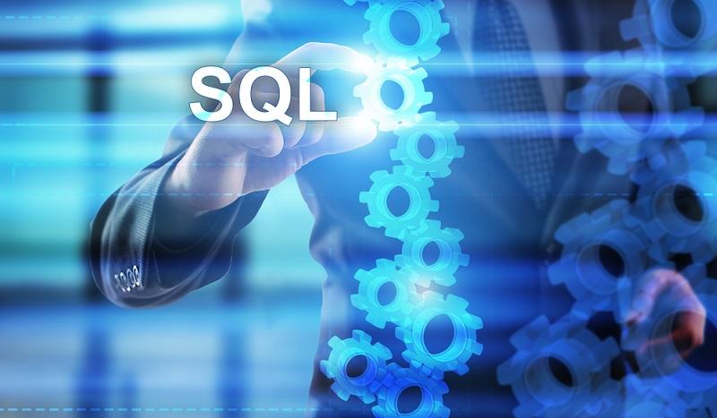 Mit einer speziellen Datenbanksprache ermöglicht die Software die Speicherung, Abfrage und Administration der Datensätze einer Datenbank. Eine gängige Datenbanksprache ist SQL (Structured Query Language). (#01)