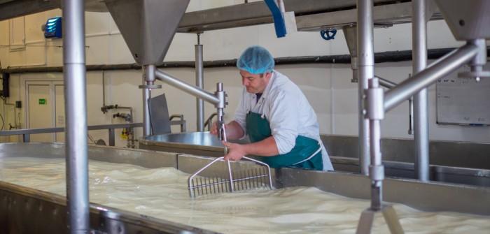 pH-Wert-Transmitter: Einsatz in der Käseproduktion