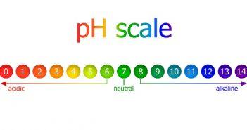 PH Meter: Technologische Höchstleistungen im Kleinformat