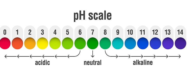 Egal, ob das pH Meter als Wassertester oder zur Messung in Chemikalien eingesetzt wird: Das Smartphone ist immer dabei.