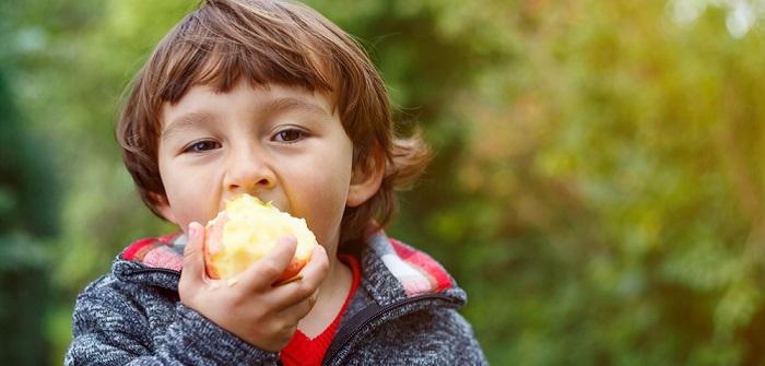 Redox Potential: Wichtige Erkenntnisse für die antioxidative Wirkung von Lebensmitteln