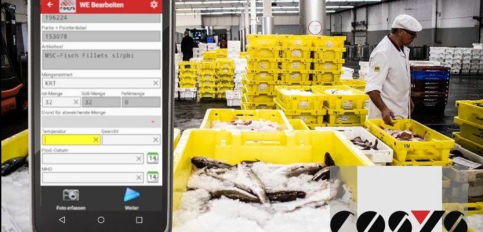COSYS: digitale Verwaltung im Tiefkühllager (Foto: COSYS)