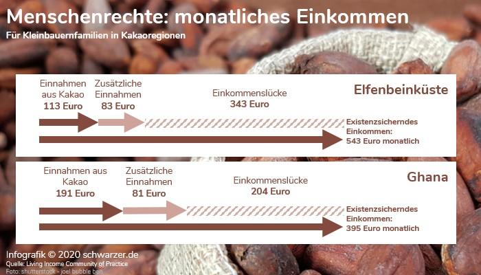 """Infografik: """"Monatliches Einkommen von Kleinbauern in Kakaoregionen"""" - Menschenrechte und  Lieferkettengesetz."""