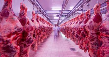 Fleischverarbeitung in Deutschland: aktuelle Umsatzzahlen, Top-10-Ranking und Trends (Foto: shutterstock.com / Mehmet Cetin)
