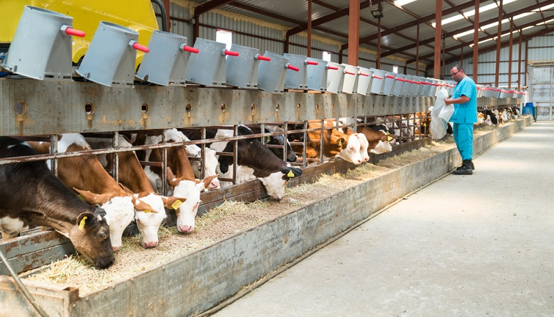 Auch in der Landwirtschaft braucht es Neuerungen ( Foto: Shutterstock-_fotopanorama360 )
